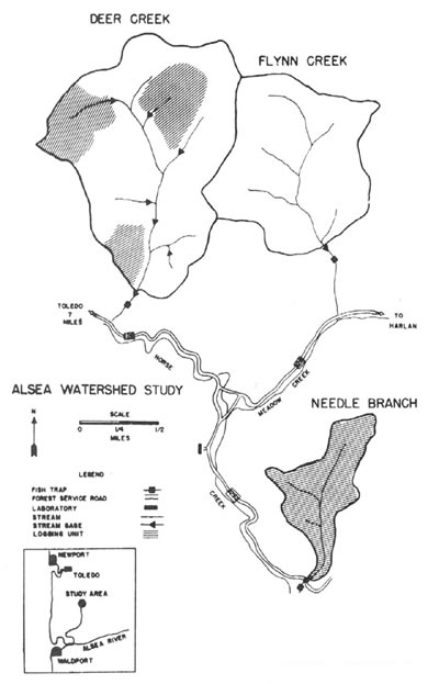 alsea_watershed